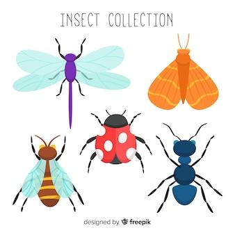 Colección de insectos dibujado a mano