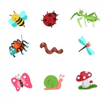 Colección de insectos de dibujo