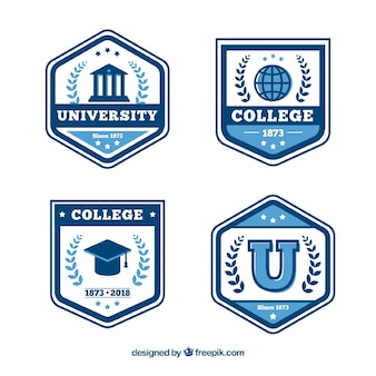 Colección de insignias de graduación en estilo plano