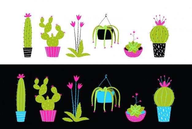 Colección de interiores de cactus y suculentas flores.