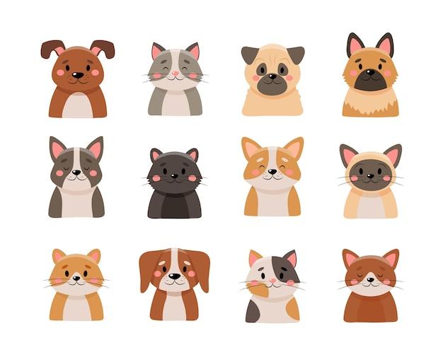 Colección de lindas mascotas, sobre fondo blanco.