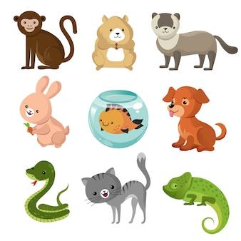 Colección de lindos animales domésticos de dibujos animados.