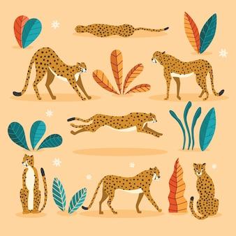 Colección de lindos guepardos dibujados a mano sobre fondo rosa, de pie, estirando, corriendo y caminando con plantas exóticas. ilustración plana