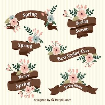 Colección de listones de primavera