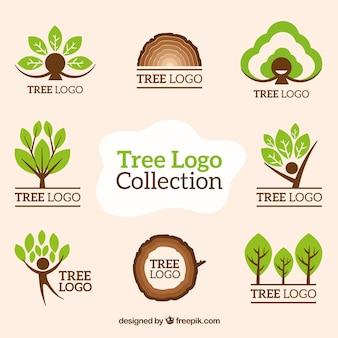 Colección de logo de árbol en estilo plano