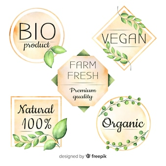 Colección de logos de comida orgánica en acuarela
