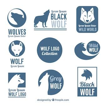 Colección de logos de lobo salvaje