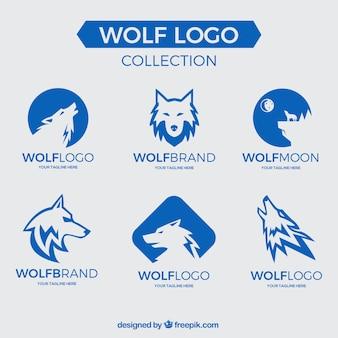 Colección logos de lobo