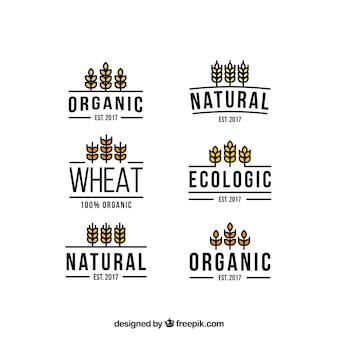 Colección de logos de trigo en estilo plano vector gratuito