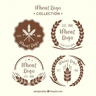 Colección de logos de trigo vintage