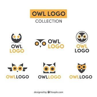 Colección de logotipos de búho amarillos y azules