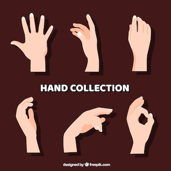 Colección de manos con diferentes posturas en estilo hecho a mano