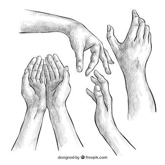 Colección de manos con diferentes posturas en estilo realista