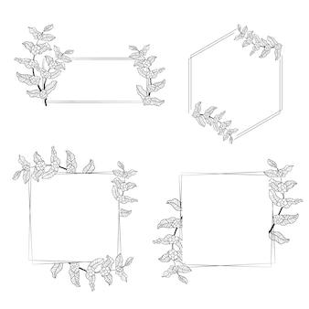 Colección de marco de corona de hojas de árbol de café