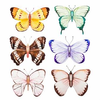 Colección mariposa acuarela