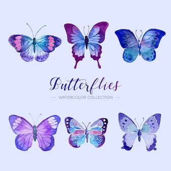 Colección de mariposas de acuarela