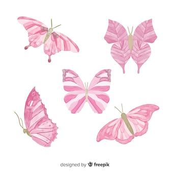 Colección de mariposas coloridas