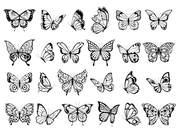 Colección de mariposas. dibujo de insecto volador de naturaleza hermosa, mariposas negras exóticas con imágenes divertidas de alas