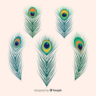 Colección moderna de plumas de pavo real dibujadas a mano
