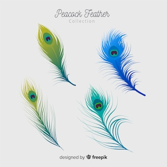 Colección moderna de plumas de pavo real con diseño realista