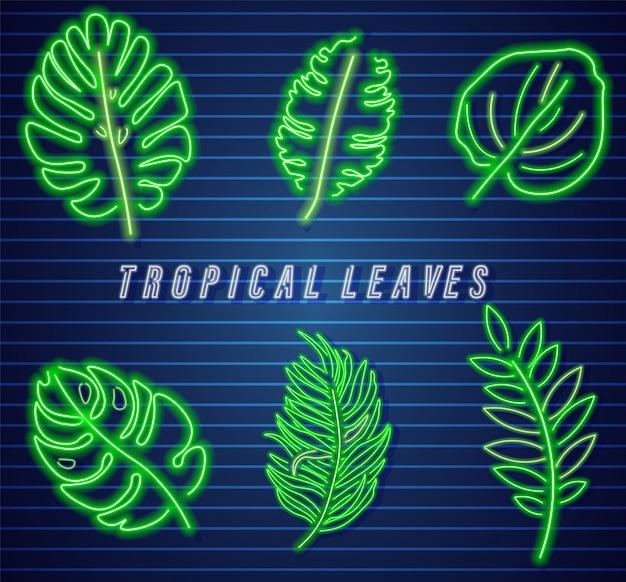 Colección de neón de hojas tropicales.