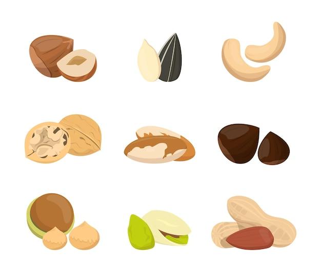 Colección de nueces. alimento natural, semilla de snack