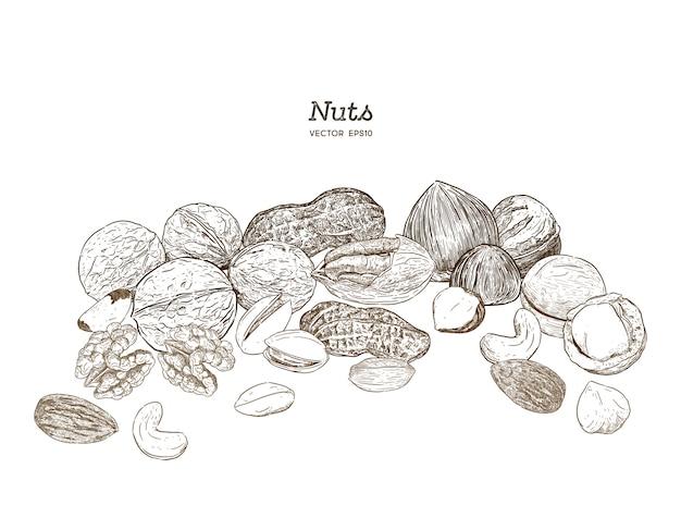 Colección de nueces