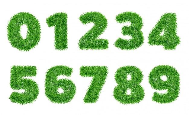 Colección de números en hierba verde.