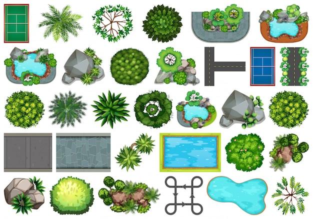 Colección de objetos de naturaleza al aire libre y elementos vegetales.