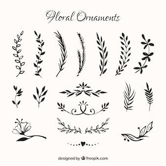 Colección de ornamentos de flores dibujadas a mano