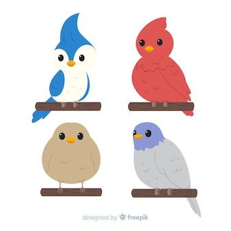Colección de pájaros adorables dibujados a mano