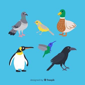 Colección de pájaros bonitos dibujados a mano