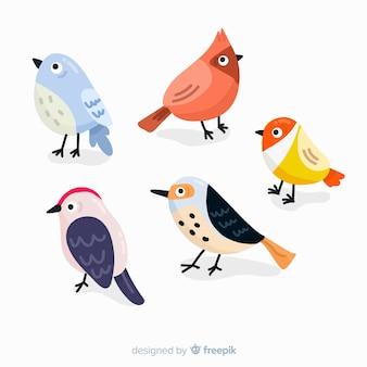 Colección de pájaros dibujados a mano.