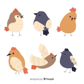 Colección de pájaros en estilo dibujado a mano