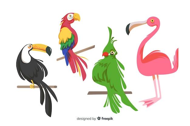 Colección pájaros exóticos estilo plano