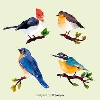 Colección de pájaros otoñales en acuarela.