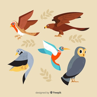 Colección de pájaros de otoño dibujados a mano
