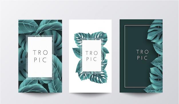 Colección de pancartas tropicales