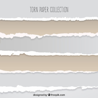 Colección de papeles rasgados