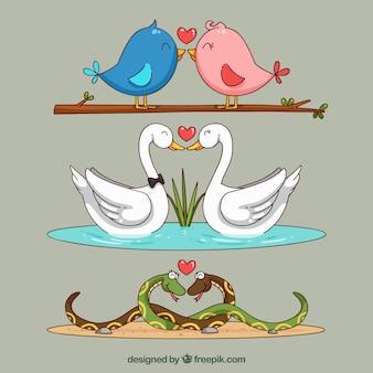Colección de parejas de animales de san valentín dibujados a mano