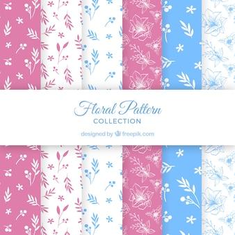 Colección patrón decorativo