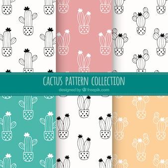 Colección de patrones de cactus dibujados a mano