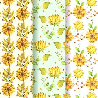 Colección de patrones de girasol acuarela