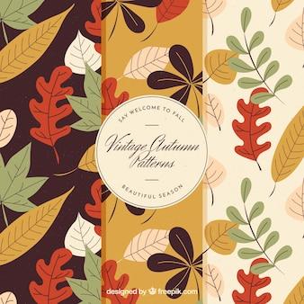 Colección de patrones otoñales dibujados a mano