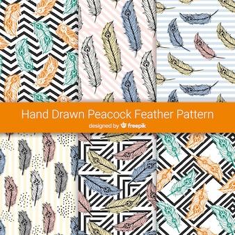 Colección de patrones de plumas de pavo real dibujados a mano
