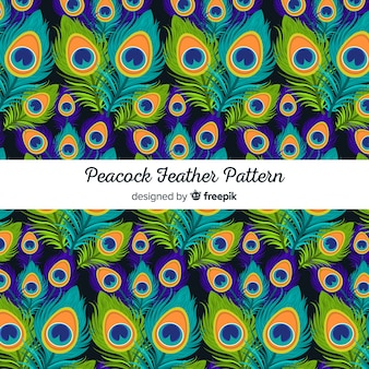 Colección de patrones de plumas de pavo real con diseño plano