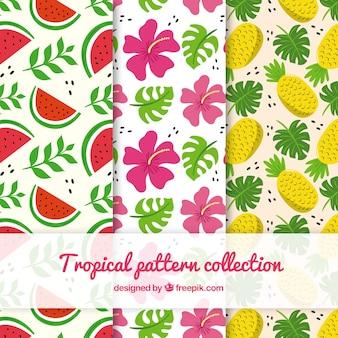 Colección de patrones tropicales con flores y frutas