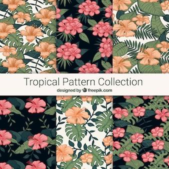 Colección de patrones tropicales