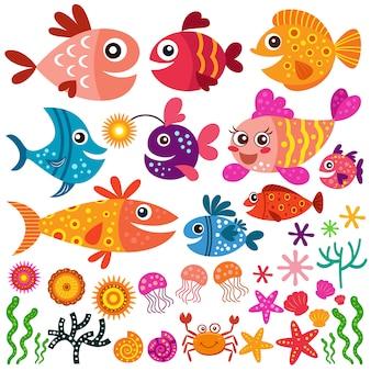 Colección de peces y conchas