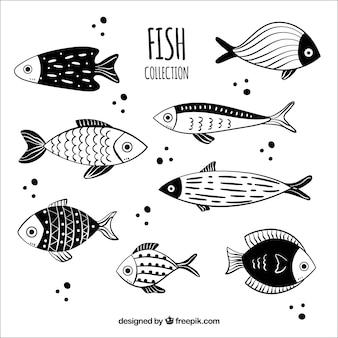 Colección de peces dibujados a mano blancos y negros